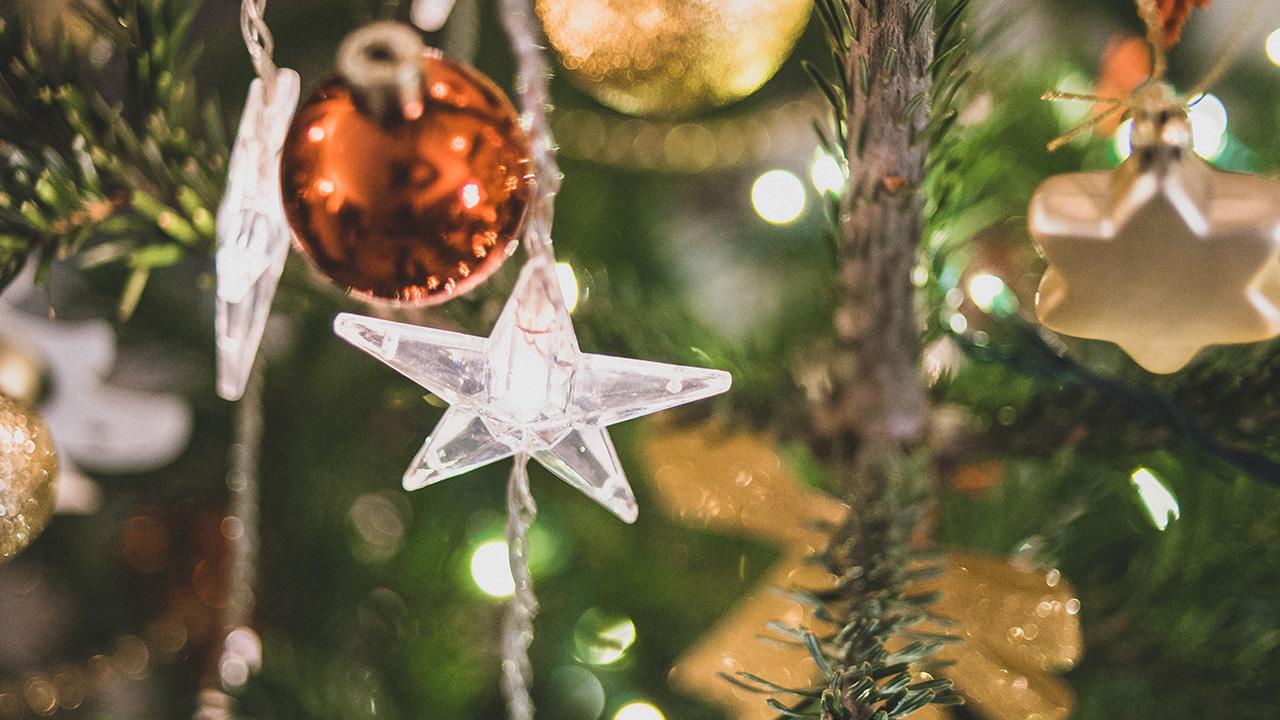 Bon Cadeau pour Noël © Franck Tourneret